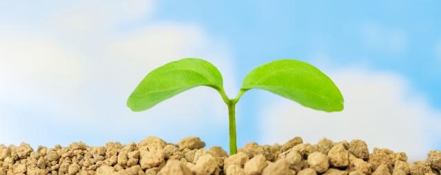 CSRとSDGsは両立できるものなのか