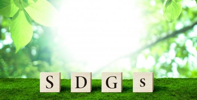 SDGsの素材はどこで手に入れるの?